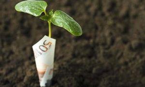 Процедура, особенности и цена выкупа земли из аренды в собственность