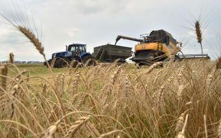Процедура продажи земельного пая сельхозназначения