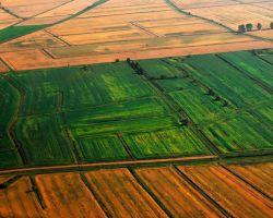 Процедура изменения категории земельного участка: возможности и вероятные сложности