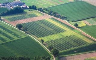 О видах разрешенного использования земель сельхозназначения