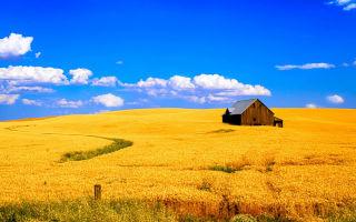 Строительство на землях сельхозназначения: особенности правового статуса земель