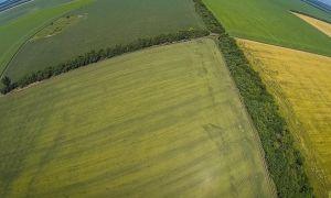 Правовое регулирование приватизации земли в украине в 2018 году
