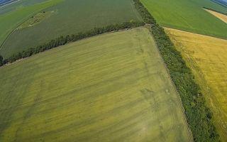 Правовое регулирование приватизации земли в украине в 2020 году
