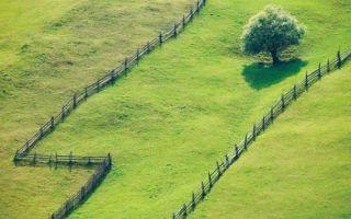 Оформление земельного пая в собственность: особенности оформления земли сельскохозяйственного назначения