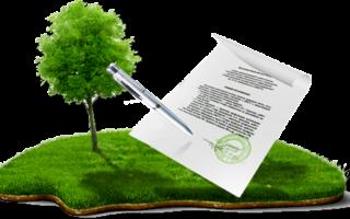 Перечень документов для межевания земельного участка, процедура