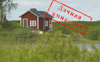 Оформление земельного участка в собственность по дачной амнистии