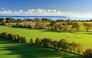 Существующие виды прав на земельные участки