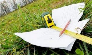 Оформление собственности на земельный участок в СНТ: все этапы