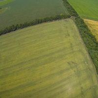 Правовое регулирование приватизации земли в украине в 2017 году
