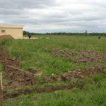 Приватизация земельного участка: до какого года продлена