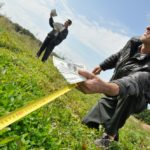 Порядок и особенности переоформления земельного участка в собственность