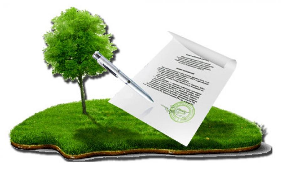Работа во время декрета законодательство