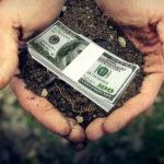 Оформление земельного участка в собственность: стоимость, процедура