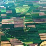 Право общей собственности на земельный участок