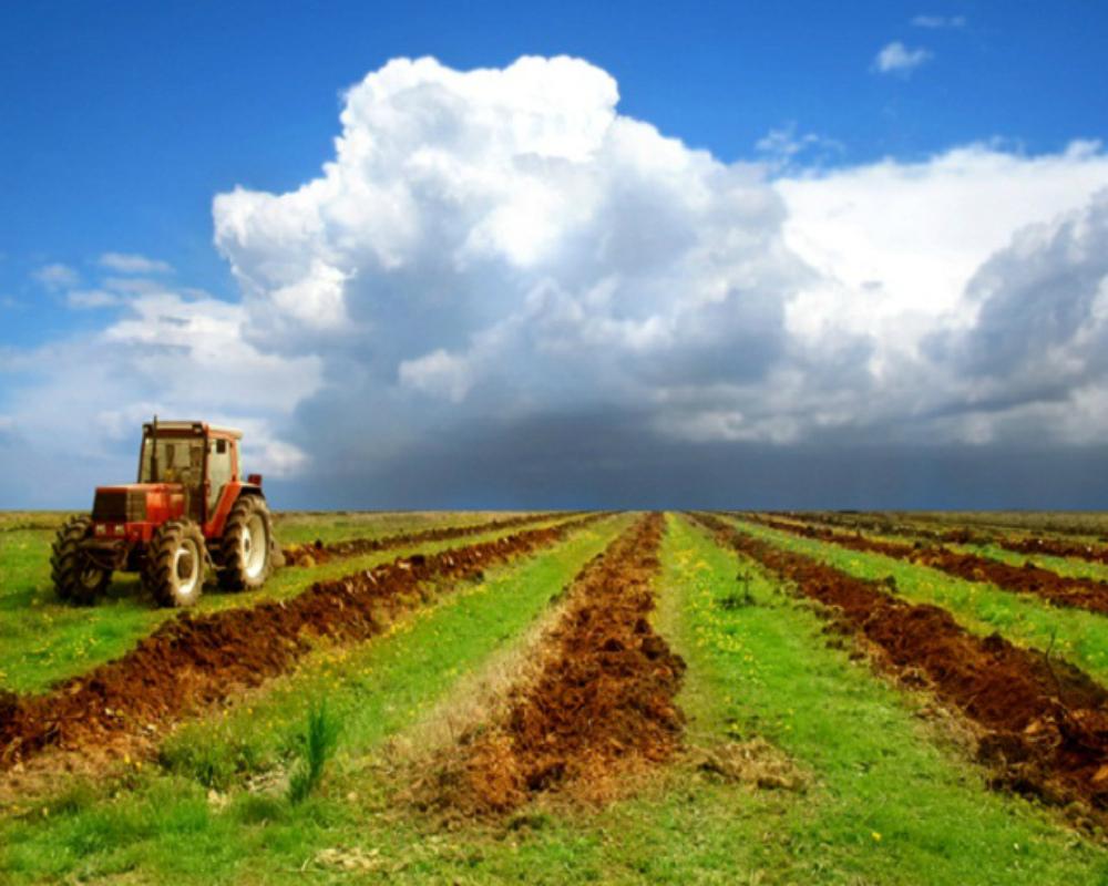 Земля сельскохозяйственного назначения аренда располагалось