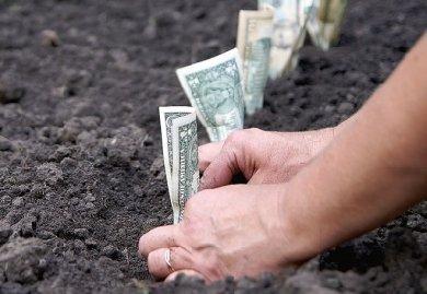 Формы платы за использование земельных участков