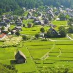 О правилах землепользования и застройки сельского поселения