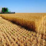 Особенности аренды земли сельхозназначения у частных лиц и государства
