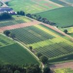 Какие существуют формы собственности на землю: основные особенности