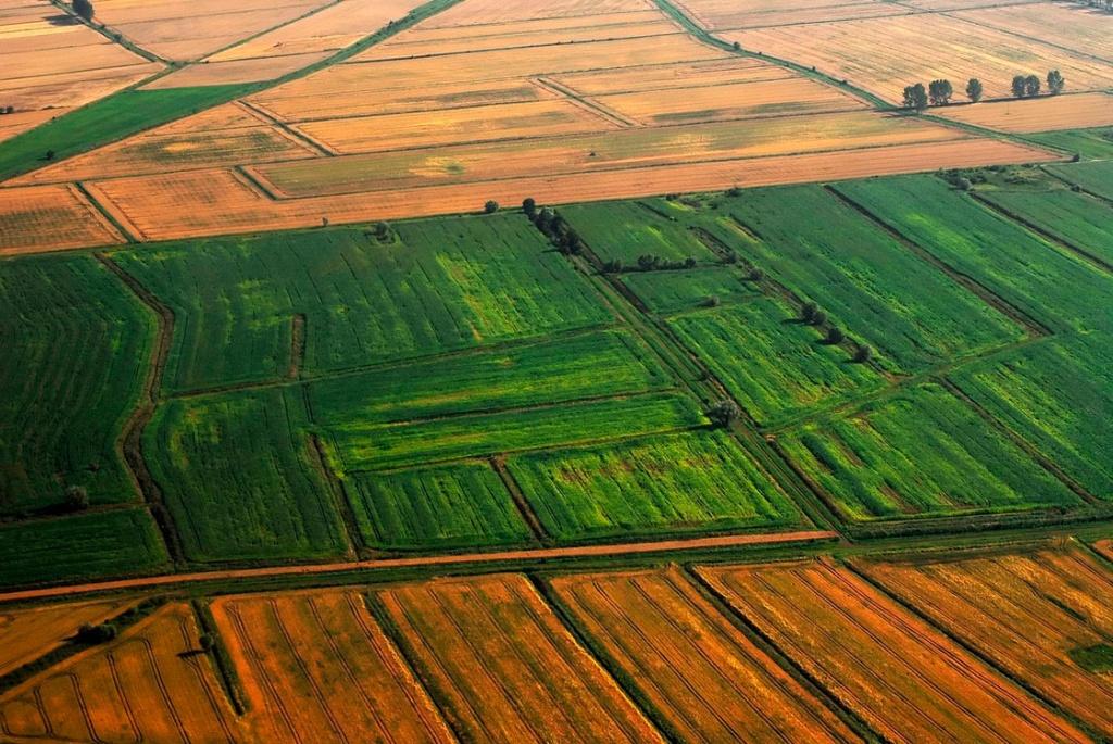 земельные паи земельный кодекс
